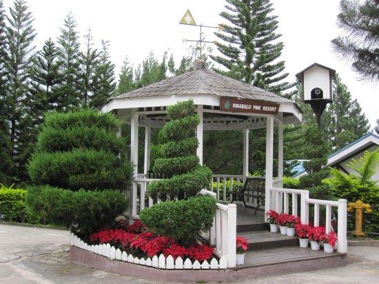 Kinabalu Pine Resort : The garden area