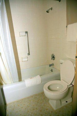 Mountain Inn: Bathroom