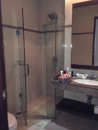 Kuta Town House Apartments: Bathroom - as far as shower door would go