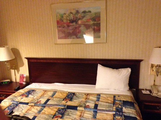 Days Inn & Suites Boardman : One pillow one light worked and floor was filthy
