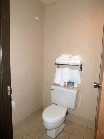 Ramada Fargo: bathroom