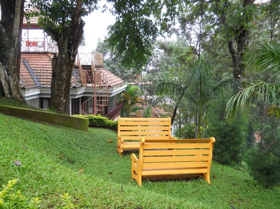Birds Valley Resorts Munnar: View from room
