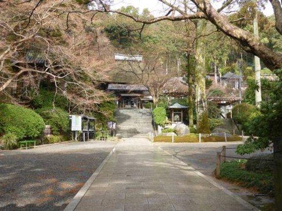 Daikozenji Temple: 見所の庭園は有料ですがこの辺は無料です