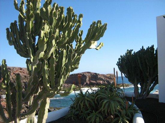 Hotel THe Volcan Lanzarote : à deux pas de l'hôtel