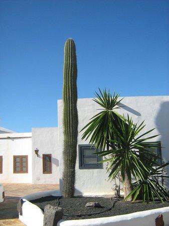 Hotel THe Volcan Lanzarote : vers la marina