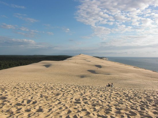 vue de la dune du pilat foto van dune du pilat la teste de buch tripadvisor. Black Bedroom Furniture Sets. Home Design Ideas