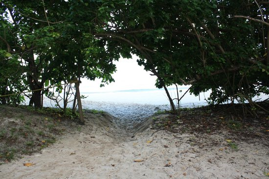 Cinnamon Bay Campground: One Pathway to Beach