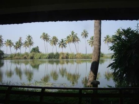 Manor Backwater Resort: View from balcony