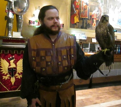 Medieval Times: The Falconer with his Falcon before the show in the lobby