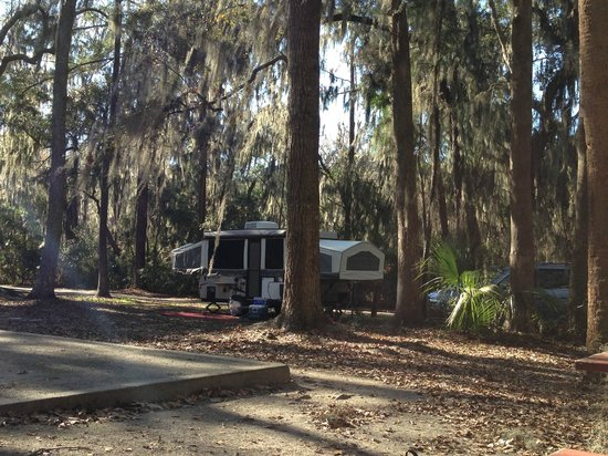 Skidaway Island State Park: Our campsite #60