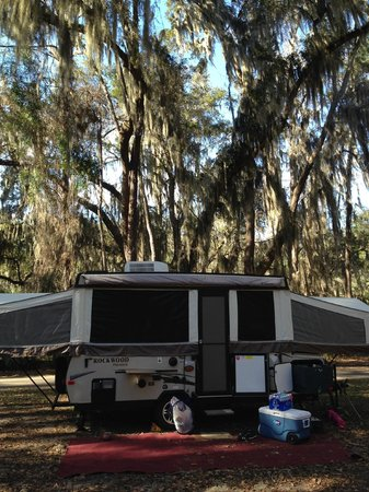 Skidaway Island State Park: site #60 look at the trees