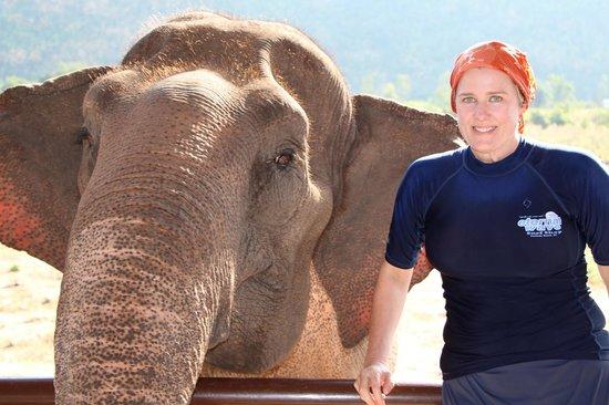 ElephantsWorld: my Rosie