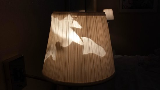 Americas Best Value Inn & Suites: Broken lampshade