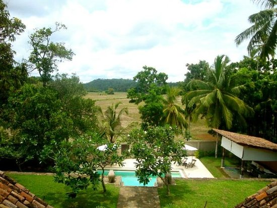 Galle Henna Estate : garden views