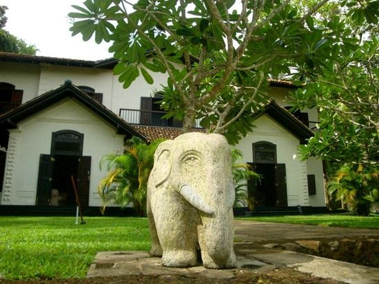 Galle Henna Estate : gardens