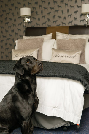Battlesteads Hotel: pet friendly bedroom