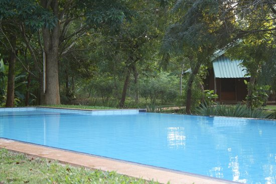 Namala Holiday Resort : Piscine