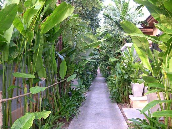Mövenpick Asara Resort & Spa Hua Hin : ホテル内通路