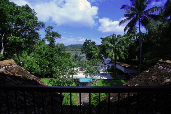Galle Henna Estate : views