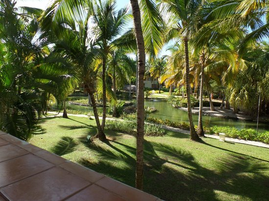 Catalonia Bavaro Beach, Casino & Golf Resort: A View from our balcony