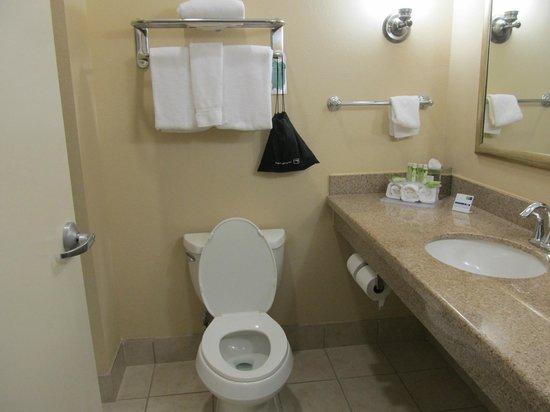 Holiday Inn Express Leland-Wilmington Area : Bathroom - room 221