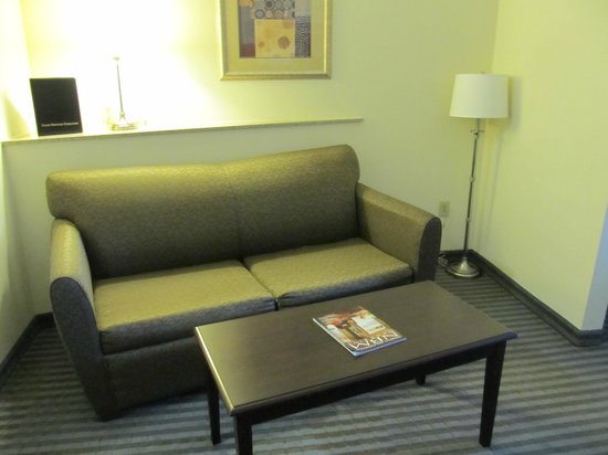 Holiday Inn Express Leland-Wilmington Area : Sleeper sofa-room 221