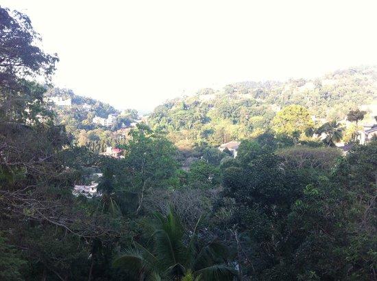 Senani Hotel : Vue depuis la réception