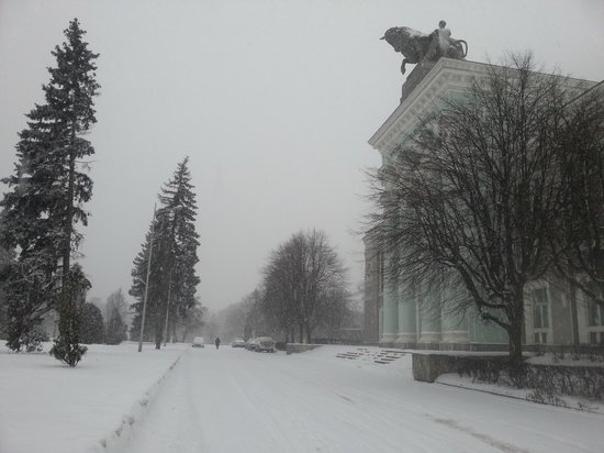 The Exhibition of Achievements of National Economy (VDNKh): VVC Exhibition Centre in the snow