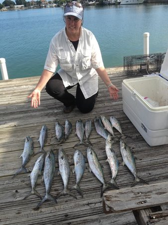 Westwinds Waterfront Resort: Spanish mackarel one day fishing!