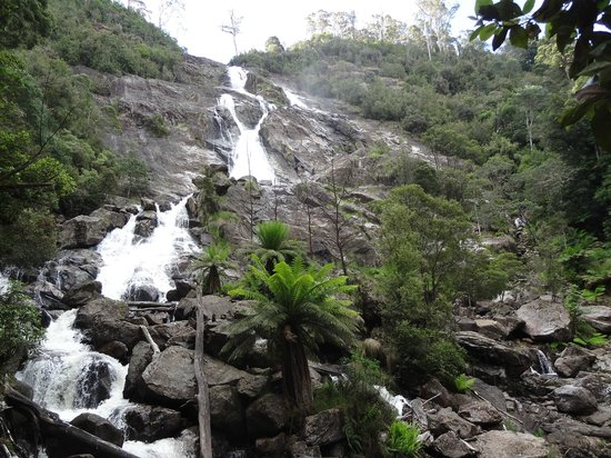 St Helens, Australia: Falls at the end of the walk
