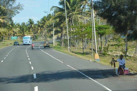 Http Www Palladiumhotelgroup Com En Punta Cana Grand Palladium Bavaro Resort Spa
