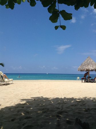 Jamaica Inn: Lounging under the almond tree