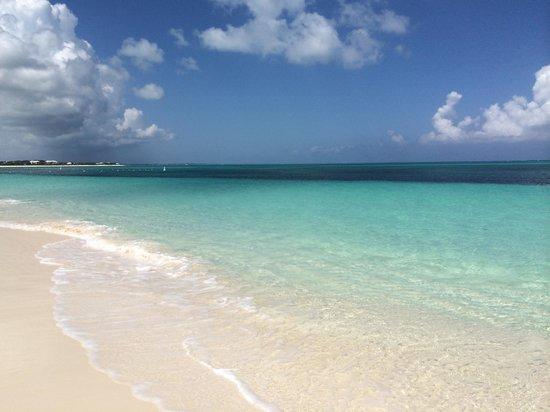 West Bay Club : The Beach View