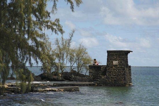 Coconut Island: 飛び込んだり釣りしたり