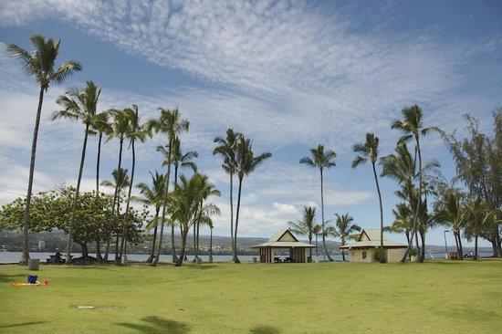 Coconut Island: 島
