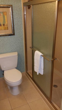 Hilton Garden Inn Clarksville: SPACIOUS shower