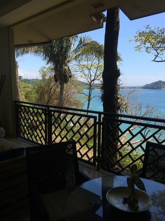 Arenas del Mar Beachfront & Rainforest Resort: pic of tree view from room 503A