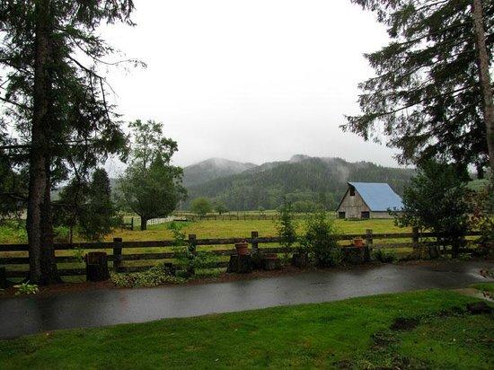 Miller Tree Inn Bed & Breakfast : View from Cedar Creek Room