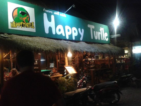 Happy Turtle: at the evening