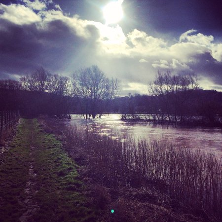Punch House Monmouth : Beautiful walk along the very high river.