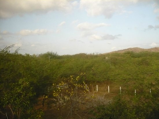 Hotel Popoyo: View from window