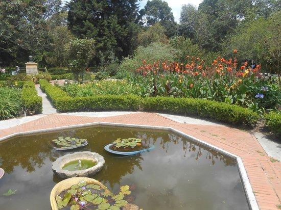 Picture of jardin botanico de bogota jose celestino mutis for Jardin botanico bogota