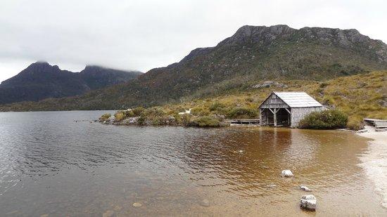 Dove Lake Circuit: Lake and boatshed