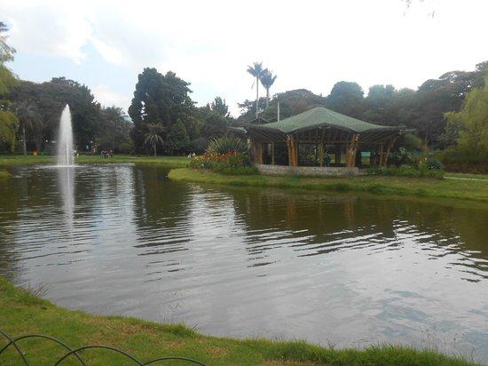 Picture of jardin botanico de bogota jose celestino mutis for Jardin 63