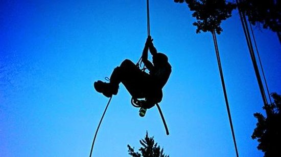Canopy Climbers: Experience the adventure of climbing trees.