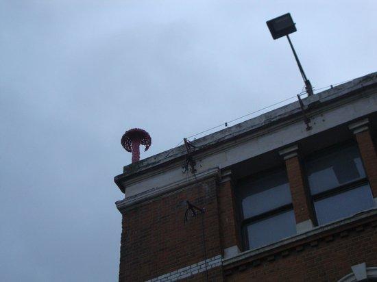 Alternative London: E lassù...un fungo!
