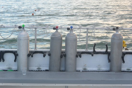 Dressel Divers: Tank setup