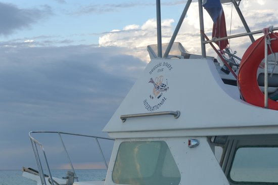 Dressel Divers : Top of one of the boats