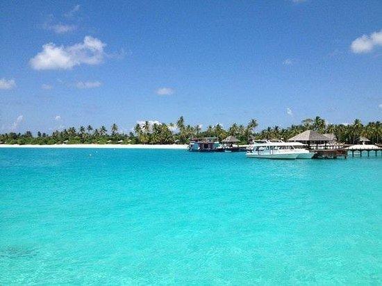 The Sun Siyam Iru Fushi Maldives: Вид на остров