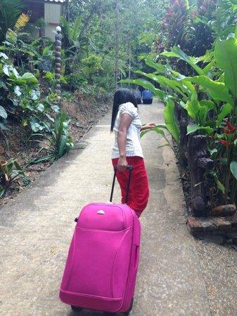 Khao Sok Las Orquideas Resort: Very steep climb to accomodation